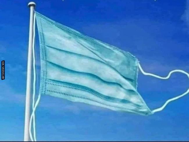 Službena zastava 2020.